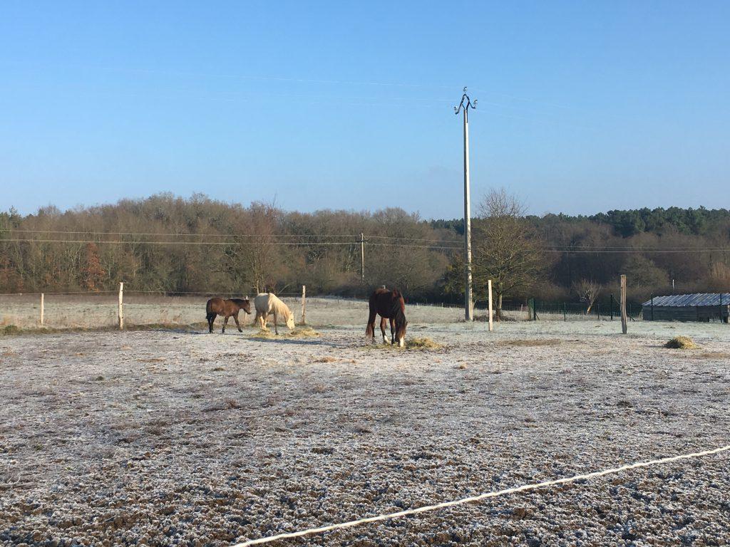Un hiver à Aubigny